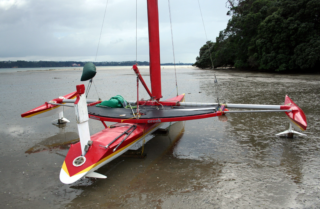 flash harry foiling trimaran